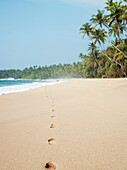 Footprints in the sand along a beach in Tangalle, Sri Lanka