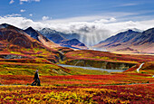 Hikers, Fall Colours And Alaska Range, Denali National Park, Alaska