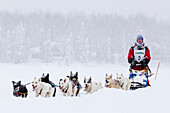 Jesse Klejka On Long Lake As He Nears The Finish Line Of The 2012 Junior Iditarod