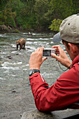 Visitor Takes Digital Photo Of Brown Bear Feeding On Sockeye Salmon At Brooks Falls, Katmai National Park, Southwest, Alaska