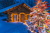 Cabin & Tree Decorated W/Christmas Lights Ak Ar Winter