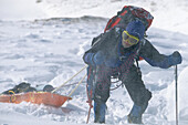 Mountain Climbers Pull Sled W/ Gear Chugach Mountains Southcentral Alaska Winter