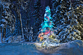 Snow Covered Lit Christmas Tree On The Edge Of A Forest At Dusk, Anchorage, Alaska, Winter