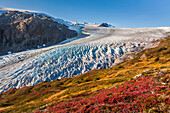 Panorama View Of Exit Glacier Flowing Out Of The Harding Ice Field, Kenai Fjords National Park, Kenai Peninsula, Southcentral Alaska
