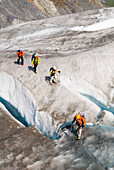 Climbers Hike Across Exit Glacier At Kenai Fjords National Park. Summer On The Kenai Peninsula Of Southcentral Alaska.