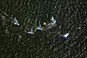 'Aerial view of sailboat race; Toms River, New Jersey, United States of America'