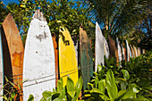 'Fence made up of surfboards; Maui, Hawaii, United States of America'