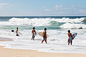 'Four young surfers check out the incoming waves; Oahu, Hawaii, United States of America'