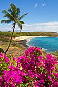 'View of Hulopoe Beach and Manele Bay, viewed from Four Seasons Resort Lanai at Manele Bay; Lanai, Hawaii, United States of America'