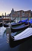 'Gondolas Mooring In A Row; Venice, Italy'