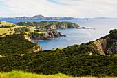 'Coastline Of Urupukapuka Island, One Of The Islands In The Bay Of Islands; Urupukapuka Island, New Zealand'