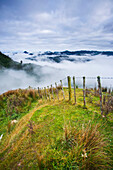 'View From The Tops Of The Hills Over The Morning Fog At Blue Duck Lodge In The Whanganui National Park; Whakahoro, New Zealand'