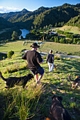 'People And Sheep Dogs Admiring The Views Overlooking Blue Duck Valley At Blue Duck Lodge, In The Whanganui National Park; Whakahoro, New Zealand'