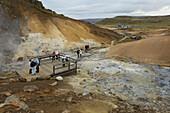'Geothermal Area; Krysuvik-Seltun, Reykjanes, Iceland'