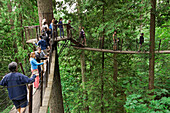 'Tourists Walk Across Bridge At Capilano Suspension Bridge Park; North Vancouver, British Columbia, Canada'
