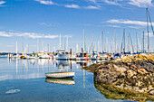 'A row boat is tied to a rock at a recreation marina filled with yachts and sailboats; Victoria, British Columbia, Canada'