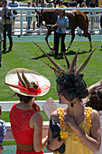 Chic and elegant public in hats at the presentation of the horses, 2013 prix de diane longines horse race, chantilly racecourse, oise (60), france