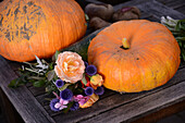 Pumpkins and bouquet of flowers