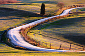 Pathway across the meadows at sunrise in the Orcia's Valley, Tuscany, Italy