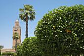 Marrakech, The minarets and gardens Koutoubia