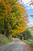 USA, Vermont, Near Pecham City