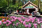 Netherlands, Lisse, Keukenhof garden, tShop seeling flowers bulbs as tulips and hyacinths