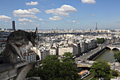 France, Paris, Notre Dame cathedral, view from tower