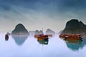 Hotel Junks, Halong Bay, Vietnam