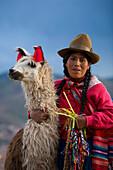 'Cuzco, Peru; Peruvian Woman And Her Llama (Lama Glama)'