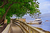 Wooden Walkway And Boats
