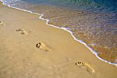 Footprints In Sand In Phuket, Thailand