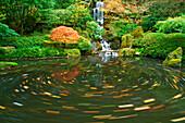 Pond, Oregon, United States Of America