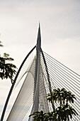 Artwork, Putra Jaya, Kuala Lumpur, Malaysia Peninsula, Malaysia, Asia