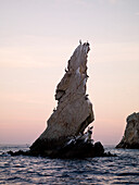 Birds Perched On Rock Formation, Cabo San Lucas, Mexico