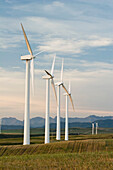 'Pincher Creek, Alberta, Canada; Wind Turbines In A Row And Mountains In The Background'
