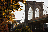 'New York City, New York, United States Of America; Brooklyn Bridge In Autumn'