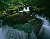 'Tennessee, United States Of America; Moss And Curved Cascade In The Roaring Fork River In Great Smoky Mountains National Park'