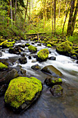 Water Flowing By Moss Covered Rocks In A Stream