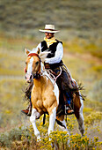 'Lonely Cowboy With Old Fashioned Mustache Rides His Beautiful Horse Through A Colorful Field Of Wildflowers; Seneca, Oregon, United States Of America'