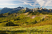 'Tatoosh Mountains In Paradise Park In Mt. Rainier National Park; Washington, United States Of America'