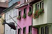 'Colourful Building Fronts With Metal Fish Sculptures And Flower Boxes On The Windows; Lindau, Germany'
