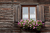 'Old Wooden Log Cabin With A Flower Box And Wooden Shutters Around The Window; Oberstdorf, Germany'
