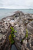 'Rocky Shoreline Of Lake Superior; Wawa, Ontario, Canada'