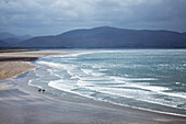 'Two People Walking With Surfboards On The Beach In Inch On The Dingle Peninsula; County Kerry, Ireland'