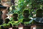 'Detail Of Kasuga Grand Shrine; Nara, Japan'