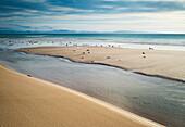 'Seashore Scenic; Los Lances Beach, Tarifa, Cadiz, Andalucia, Spain'