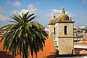 'Church Bell Towers And Palm Tree; Porto, Portugal'
