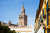 'Buildings In The City Of Sevilla; Sevilla, Andalusia, Spain'