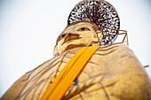 'Tall Standing Thai Buddha; Bangkok, Thailand'