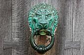 'A Copper Lion Door Knocker On A Wooden Door; Northumberland, England'
